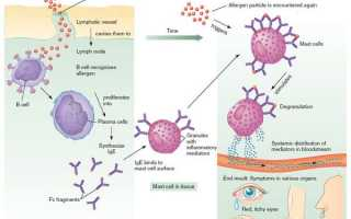 Аллергия на уколы