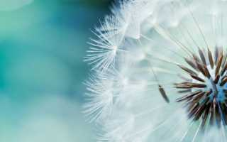 Флюдитек: избавит от кашля и облегчит дыхание