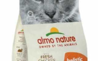 Топ-15 лучших гипоаллергенных кормов для кошек