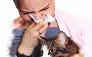 Анализ на аллергию на животных