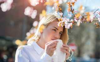 Сезонная аллергия: как облегчить состояние