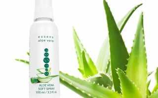 О спрее Aloe Vera Soft Spray — Essens