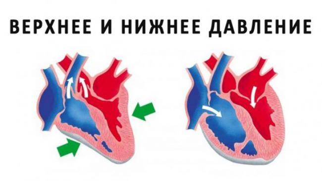 258_152564713413.jpg