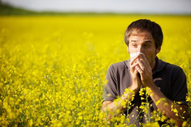 Ученым удалось понять генетические механизмы аллергии